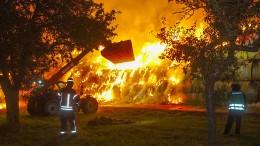Feuerwehrmann zu zehn Jahren Haft verurteilt