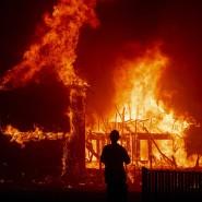Im November 2018 stand Paradise in Flammen.