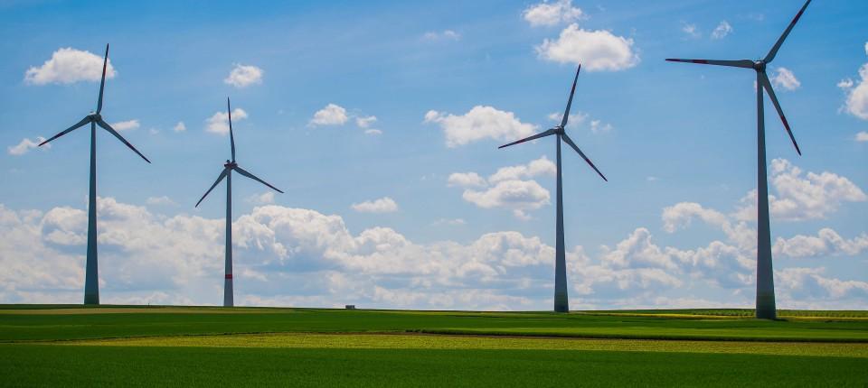 Vier Windkraftanlagen stehen auf einem Feld in der Nähe von Mainz.