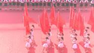 Das also ist aus den Märschen geworden: Yifan Li, Bildforschung. Rosa (2016), Ein-Kanal-Videoinstallation.
