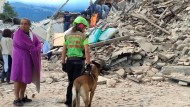 Schweres Erdbeben erschüttert Italien