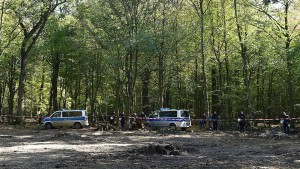 Letztes Baumhaus im Hambacher Forst geräumt