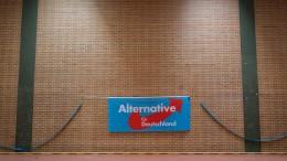 Hessische SPD: Verbindung der AfD zu Rechtsextremen beobachten
