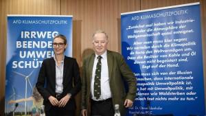 """AfD fordert  """"ideologiefreie"""" Diesel-Grenzwerte"""