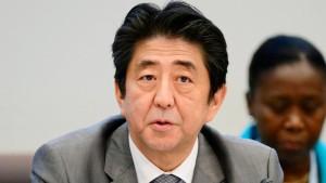 Japan verspricht Milliardenhilfen für Afrika