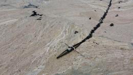Algenschleim bedroht Meeresleben und Fischerei