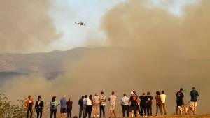 Zehn Tote bei Waldbränden in Kalifornien