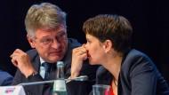 Können sich nicht mehr riechen: Jörg Meuthen und Frauke Petry – hier noch im Gespräch auf dem AfD-Parteitag im April in Köln.