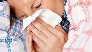 Derzeit bricht eine wahre Grippewelle über Deutschland herein.