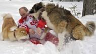 Putin und die Tiere