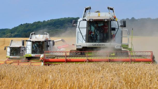 Ernte läuft auf Hochtouren