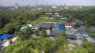 Kampf um Bangkoks grüne Lunge