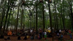 Aktivistin im Hambacher Forst abgestürzt und verletzt