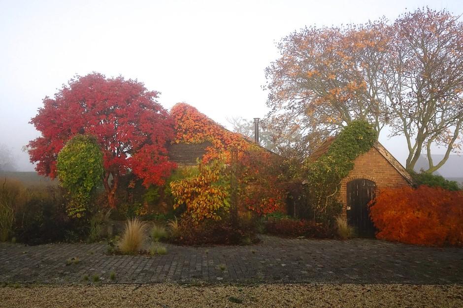 Der Hof, getaucht in Herbstfarben
