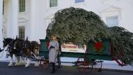 Ungewohnt gut gelaunt: Melania Trump mit Baum