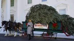 Melania Trump nimmt ihren letzten Weihnachtsbaum entgegen