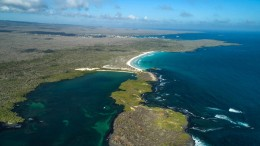 22 Tonnen Müll an Küsten der Galápagos-Inseln