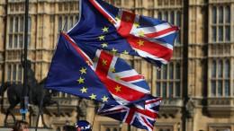 """""""Ohne Briten wird die EU schlechter"""""""
