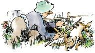 Falsches Spiel mit Roger Rabbit: Reingelegter Hase