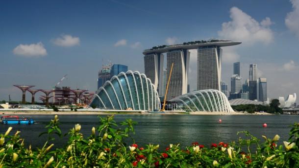 botanische g rten in singapur die b ume der welt f r den garten am meer umwelt faz. Black Bedroom Furniture Sets. Home Design Ideas