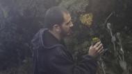 Bitte nicht essen: José González begutachtet Senecio oerstedianus, eine giftige Greiskraut-Art, die vor allem in der Höhe wächst, hier auf dem Irazú (3432 Meter), dem höchsten Vulkan Costa Ricas.