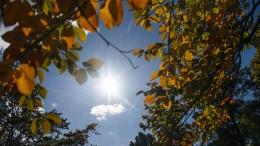 Der Sommer kehrt zurück – zumindest ein bisschen