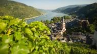 Die Rückkehr des Rheinweins