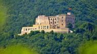 Zu Besuch auf dem Hambacher Schloss