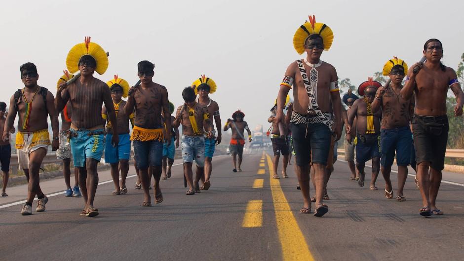 Vertreter der Kayapo in Brasilien protestieren für mehr Unterstützung während der Pandemie und gegen illegale Rodungen.