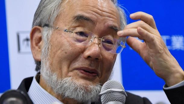 Medizin-Nobelpreis geht an den Japaner Yoshinori Ohsumi