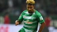 Eine handvoll Spieler für Bremen