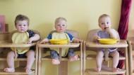 Kleine Kinder, große Ansprüche: Mittagessen in einer Krippe in Hamburg