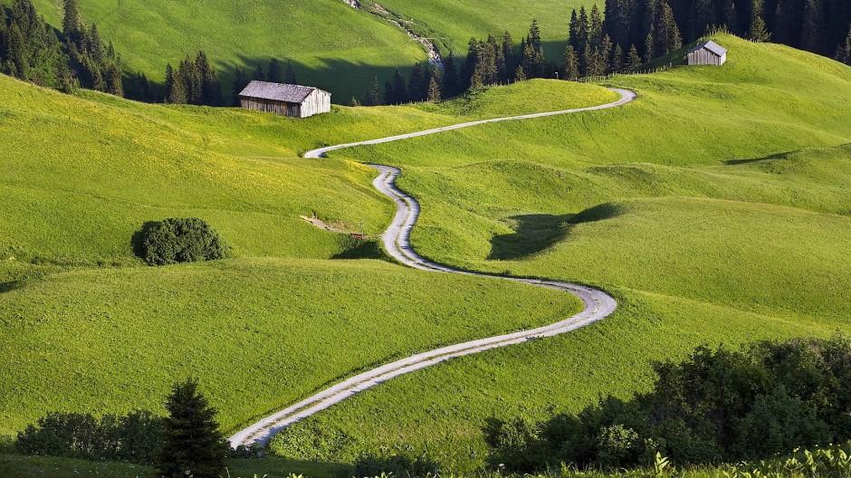 Was man sich nach vierzehn Stunden auf der Straße von einem Bergpass wünscht: unberührte Felder, dichter Wald, Blumenwiesen, Meditation mit Kühen