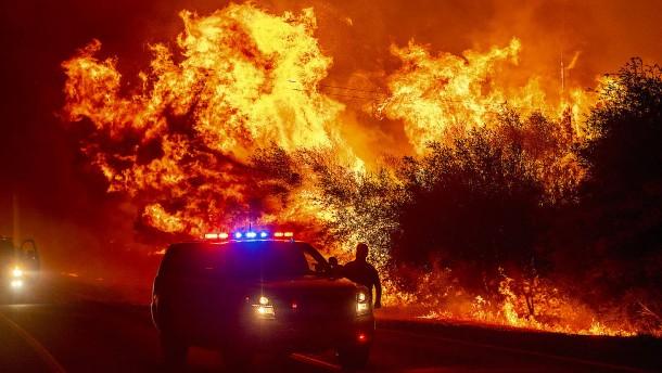 Trump wird im kalifornischen Brandgebiet erwartet