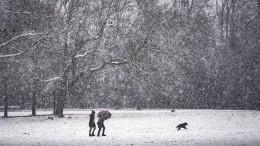 Die neue Woche startet winterlich