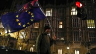 Demonstrant vor dem britischen Parlament