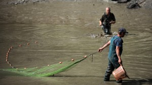 Feuerwehr lässt Badesee nach Schildkrötenbiss ab
