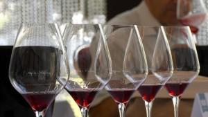 Auf der Suche nach dem besten Wein