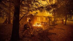 Waldbrände treiben größten amerikanischen Versorger in die Pleite