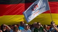 Protest gegen Merkel in Dresden: Demonstranten der Jungen Alternative stehen im August 2018 vor einer Deutschlandflagge.