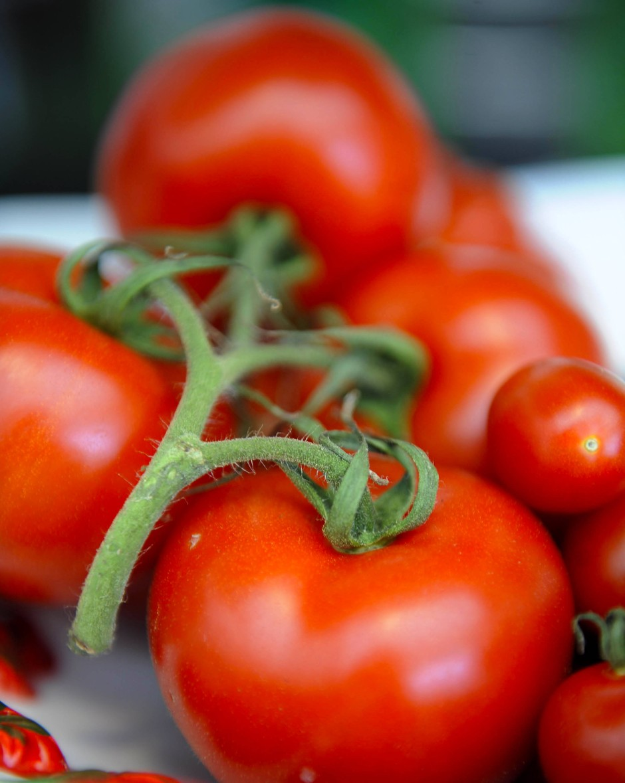 """Tonnenweise Obst und Gemüse landet im Müll, weil es nicht dem """"Schönheitsideal"""" entspricht."""