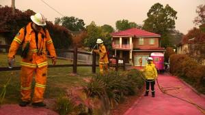 Häuser und Gärten werden rosa