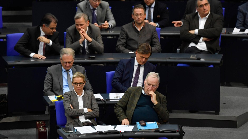 Alice Weidel (AfD) spricht Chinesisch, sie bildet damit eine große Ausnahme im Bundestag.