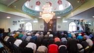 Muslime in Niedersachsen beim Freitagsgebet in 2014.