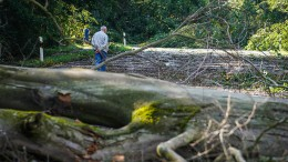 Unwetter sorgt in Hessen für Verwüstungen