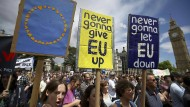 """Aus """"Never gonna give you up"""" von Rick Astley wird """"Never gonna give EU up""""."""