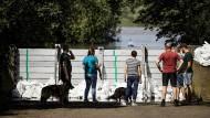 Bewohner im niederländischen Arcen beobachten hinter einem temporären Flutschutz den Wasserpegel der Maas.