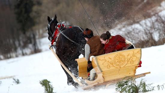 Mit dem Pferdeschlitten durch den Schnee