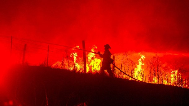 Waldbrand nahe des Yosemite-Nationalparks