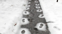 Wie wird denn nun der Winter?